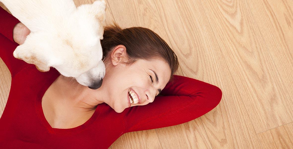 dog-floor